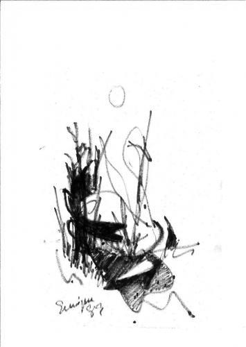 Galería 5